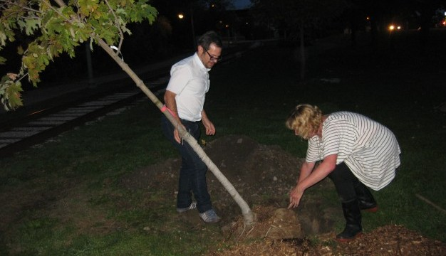 A flash-heavy photograph of a tree being put into the grassy ground by two figures.