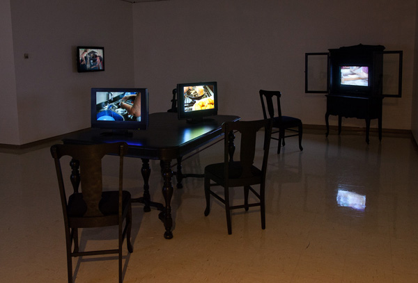 Feed at Owens Art Gallery: Installation photo by Roger Smith