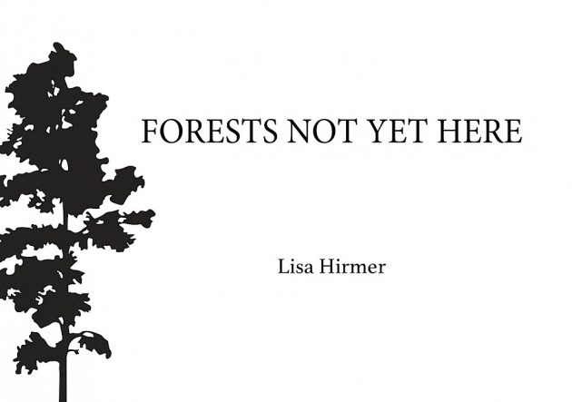 """Forests Not Yet Here"" cover detail"